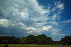 DP0Q2666lr (yoshitoshi ABe) Tags: sky cloud sigma  dp0quattro 20160626