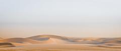 Art of Dunes! (aliffc3) Tags: art landscape artistic sandscape sanddunes qatar mesaieed tamron2470f28 nikond750