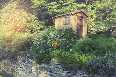 Little shed with Flowers (LarryHB) Tags: travel flower horizontal rural vintage photography illinois shed creative americana 2016