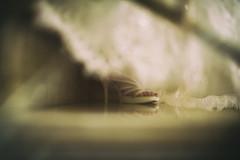 Servizio fotografico Latina (Fotografo Matrimonio Roma (Francesco Russotto)) Tags: wedding roma engagement photographer latina matrimonio reportage fotografo fotografi creativo serviziofotografico lacatenaweddingevents