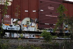 Chub (Revise_D) Tags: graffiti chub freight revised bsgk benching benchingsteelgiants