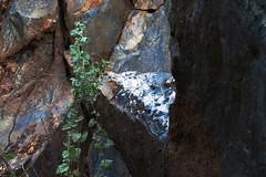 Granite, Sierra National Forest (lotos_leo) Tags: california travel mountains texture nature rock landscape outdoor yosemite granite mountainside sierranationalforest   road140  centralyosemitehighway crossamerica2015