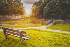 le temps d'une pose (photographegs) Tags: soleil graveline dunkerque rempart sun jaune couleur pose dtente vert herbe pont bridge eau watter paysage