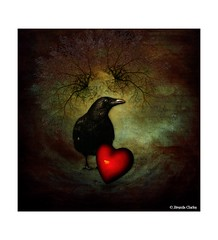 (~Brenda-Starr~) Tags: red bird texture heart raven allrightsreserved textured october2014