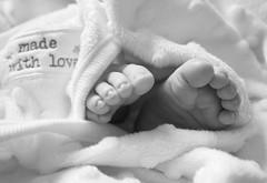 Made With Love (kellyhackney1) Tags: family blackandwhite baby cute love monochrome toes precious cherub littleboy babyboy preciousmoments piccy babylove tinytoes teenytinytoes littlecherub madwithlove