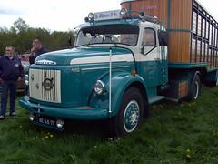 1968 Volvo N88 cattle truck (Davydutchy) Tags: show holland classic netherlands car festival truck volvo cattle may oldtimer trailer 88 friesland vrachtwagen dehaan aanhanger frysln evenement vrachtauto 2013 n88 veevervoer viehtransport hoornsterzwaag