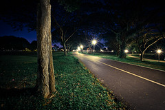 Lit path in the park (63n1) Tags: park night lights long exposure track path jogging 5dmk3