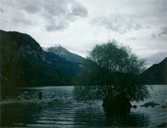 (Marco Resta Photography) Tags: lake snow mountains cold tree girl vintage polaroid fuji 350 land instant nymph trentino katatonia innersilence fp100