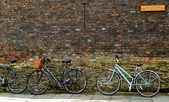 Leaning Cycles (Travis Pictures) Tags: city uk cambridge summer england tourism photoshop nikon britain bikes tourists bicycles cambridgeshire eastanglia cambridgeuniversity cambs d3100