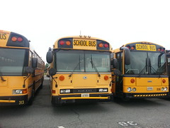 Blue Bird All American RE and Thomas HDX School Bus (hcpsmarshall) Tags: thomas international bluebird schoolbuses henrico