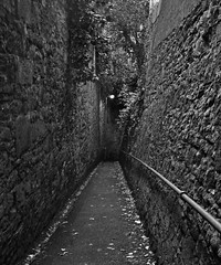 Walls of my mind (Dazzygidds) Tags: blackandwhite texture stonework walkway railing solitary austere