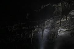山口の壁紙プレビュー