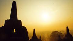 Stupas (FFFOTOGRAFI) Tags: world old trip morning travel holiday travelling heritage sunshine sunrise indonesia temple golden java peaceful unesco gateway borobudur magelang