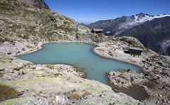 Massif du Mont-Blanc, lac Blanc (Ytierny) Tags: france horizontal altitude chamonix montblanc refuge alpinisme lacblanc randonne hautesavoie sommet et aiguillesrouges glacierdutour plandeau hautemontagne valledechamonix massifalpin alpesdunord ytierny