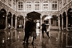 Tango (selenis) Tags: france nikon frança tango lille tangoargentino 2013 18200vr d80