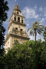 _dsc6888 (Demetrio1963) Tags: espaa andaluca spain getty mezquita crdoba gettyimages demetrio catedralmezquita