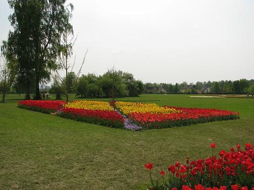 Arboretum - 30