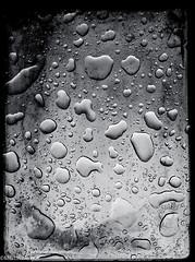 oh, rainy day (Martin.Matyas) Tags: blackandwhite water blackwhite wasser sw waterdrops schwarzweiss regen wassertropfen nass feucht iphone4 schwarzweissfoto