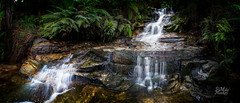 Leura Cascades (Mike Hankey.) Tags: bluemountains leura