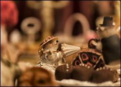 _SG_2013_12_8003_IMG_1949 (_SG_) Tags: santa christmas weihnachten star schweiz switzerland candle suisse time market kerze weihnachtszeit christmasmarket basel santaclaus claus bale merrychristmas nikolaus stern weihnachtskugel christmastime kugel basle christmasball feliznavidad buonnatale froheweihnachten samichlaus joyeuxnoël 2013 santigläuse baslerweihnachtsmarkt christmasmarket2011 baslerweihnachtsmarkt2013