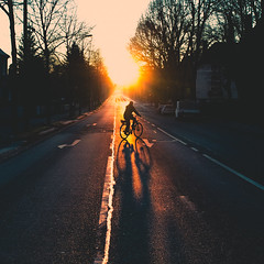 2014 (Philipp Götze) Tags: road street morning winter sun cold bike sunrise biking biker backlighting
