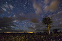 Paisaje nocturno (Brandon Curtis Giesbrecht) Tags: light night canon painting photography long exposure nightscape tokina paraguay chaco f28 t3i 1116 hiades