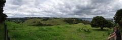 northland pano 12 (Bilderschreiber) Tags: newzealand panorama green nature natur northisland grn northland neuseeland nordinsel