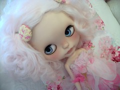 Dolly Love.....