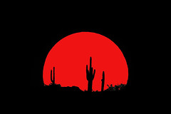 Blood red moonset (kinoshaman) Tags: arizona moon saguaro moonset