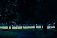 Untitled (Mohamed Saeed0) Tags: park uk flowers trees red summer england sky sun green london film beautiful look grass canon vintage landscape eos