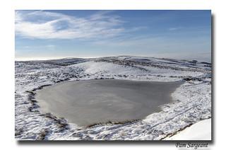 Frozen Mermaid Pool