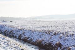 Schneespaziergang (Oli_21) Tags: schnee winter snow beautiful germany landscape deutschland 50mm nikon day walk f14 sigma landschaft spaziergang d5100