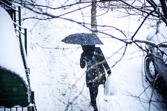 snowpocalypse in nyc (wei never sleeps) Tags: nyc newyorkcity winter snow brooklyn snowing juno snowpocalypse