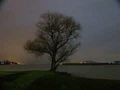 Balaton lake at night (gefeddert) Tags: winter shadow lake cold tree nature water night canon dark hungary nightscape nightshot g bb balaton balatonboglar g1x