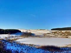 Frozen (poach01) Tags: trees winter lake snow ice water frozen pond bluesky loch frozenpond iphone hawick scottishborders iphone6
