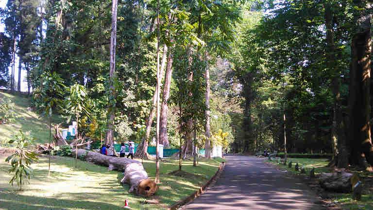 Makam Mbah Jepra