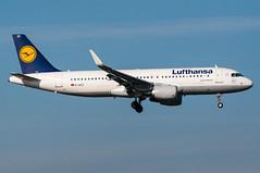 D-AIZZ - Lufthansa - Airbus A320-200 (5B-DUS) Tags: plane airplane am airport frankfurt aircraft aviation main jet airbus flughafen flugzeug lufthansa spotting fra a320 320 fraport planespotting luftfahrt rheinmain eddf a320200 daizz sharklets