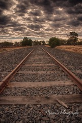 Those endless lines_2444 (Manni750) Tags: sky lines clouds dark bush rail outback endless