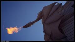 Dragon (Neil Tackaberry) Tags: usa fire orlando alley dragon florida flames breath harry potter harrypotter neil theme universal studios universalstudios themepark breathing diagonalley diagon tackaberry neiltackaberry