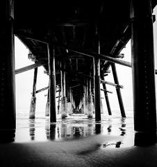 Under the Boardwalk...  #picoftheday #photooftheday #photographerwannabe #newportbeach #pier #undertheboardwalk # #eerie# #nature #blacknwhite  #omg (cmayoralgo) Tags: nature pier eerie newportbeach blacknwhite omg photooftheday picoftheday undertheboardwalk photographerwannabe