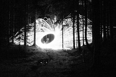 i like the noise (gavin.hoskins) Tags: longexposure trees blackandwhite lines woodland outside outdoors photography tripod noise experimenting slowshutterspeed wirewool canoneos60d
