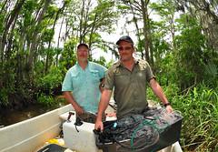 Swamp People (Fish as art) Tags: fishing rivers uga sturgeon universityofgeorgia fisheries drdouglaspeterson martinhochleithner