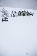 Nieve en Arraba (Jabi Artaraz) Tags: jabiartaraz jartaraz zb euskoflickr arraba ganguren gorbea nieve elurra