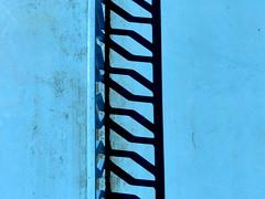 Table tennis (mikkelfrimerrasmussen) Tags: blue shadow net table turquoise panasonic tennis jpeg fz300 dmcfz300