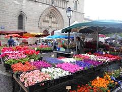 Cahors_0706 (artnbarb) Tags: flowers france market cahors