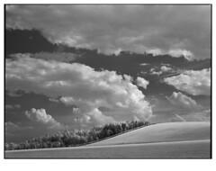Hillside (Dave Woodhead 71) Tags: blackandwhite mamiya film clouds rollei mediumformat landscape ir derbyshire infrared analogue 6x7 agfa hoya eastwood brinsley rz67 xtol r72 silverlight ir400 epsonv750 betterscanning