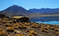 Laguna Meiques * Explored May 20 2016 * (Made Bulkes) Tags: chile lake volcano desert atacama desierto laguna cabaa altiplano volcan socaire antofagasta altiplanica