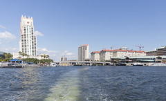 2016 Tampa Harbor Cruise (52) (maskirovka77) Tags: cruise tampa harbor us tour waterfront unitedstates florida dolphin pelican boattrip mansions funboat