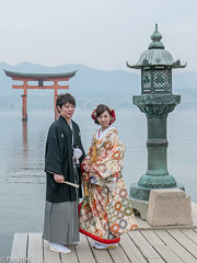 Wedding couple at Miyajima Torii Gate (patuffel) Tags: wedding japan japanese groom bride gate couple shrine traditional style miyajima torii itsukushima