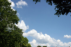 Summer Skies (DapperDaphne) Tags: sky cloud storm rain weather skyline clouds nimbus cumulus skyskape cumulo